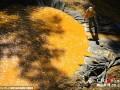 美环保署误将380万升污水倒进河流致河水变橙色